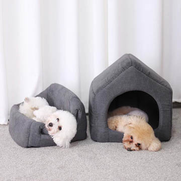meilleure niche pour chien