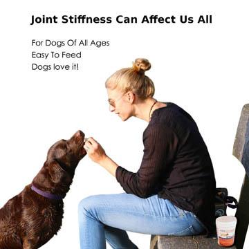 meilleur complément contre l'arthrose pour chien