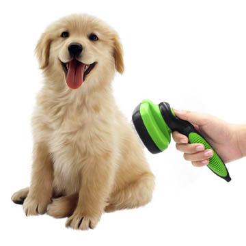 meilleur aspirateur pour poils de chiens