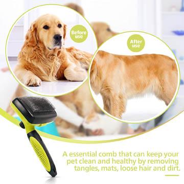 meilleures brosses pour chiens