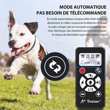 meilleurs colliers électriques pour chiens