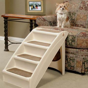 meilleur escalier pour chien