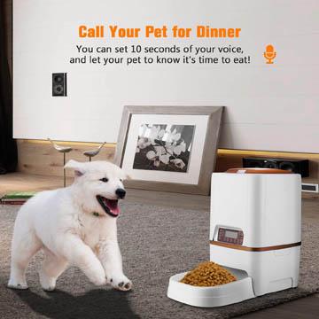 meilleur distributeur de croquettes automatique pour chiens
