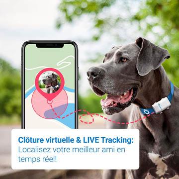 meilleurs colliers GPS pour chien