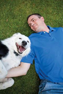 meilleure clôture anti-fugue pour chien